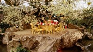 济宁鱼台生态餐厅