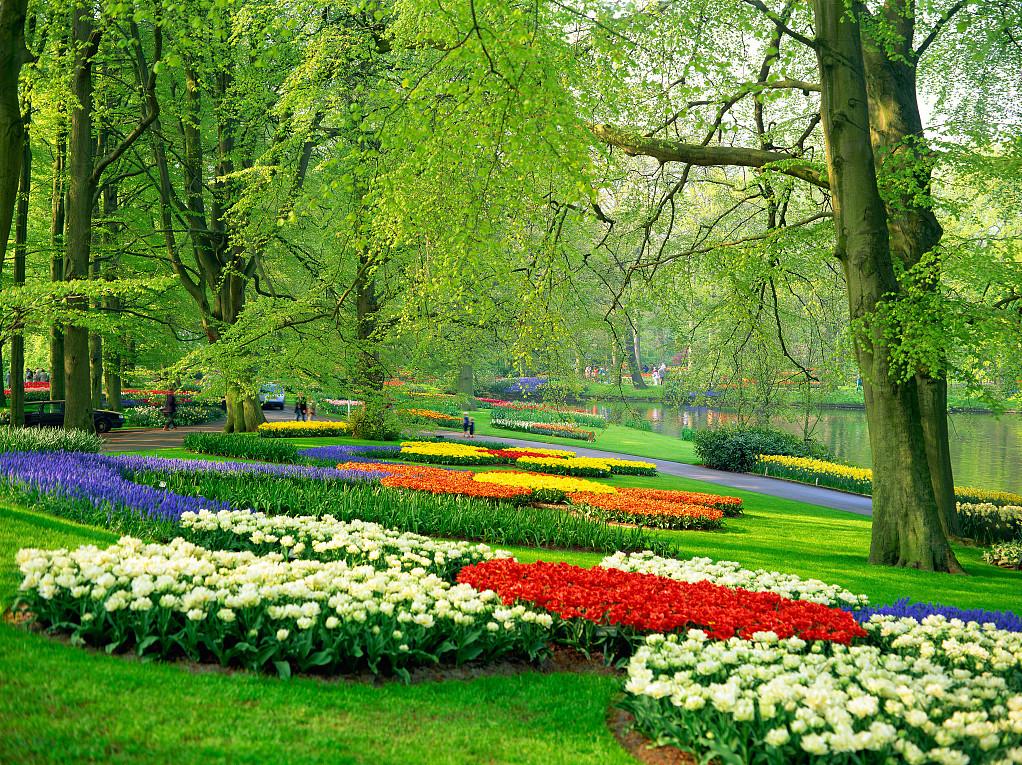 主题公园景观设计